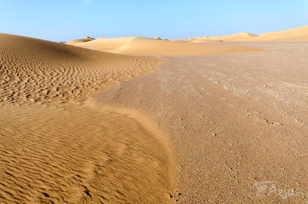 Piaskowe wydmy Empty Quarter