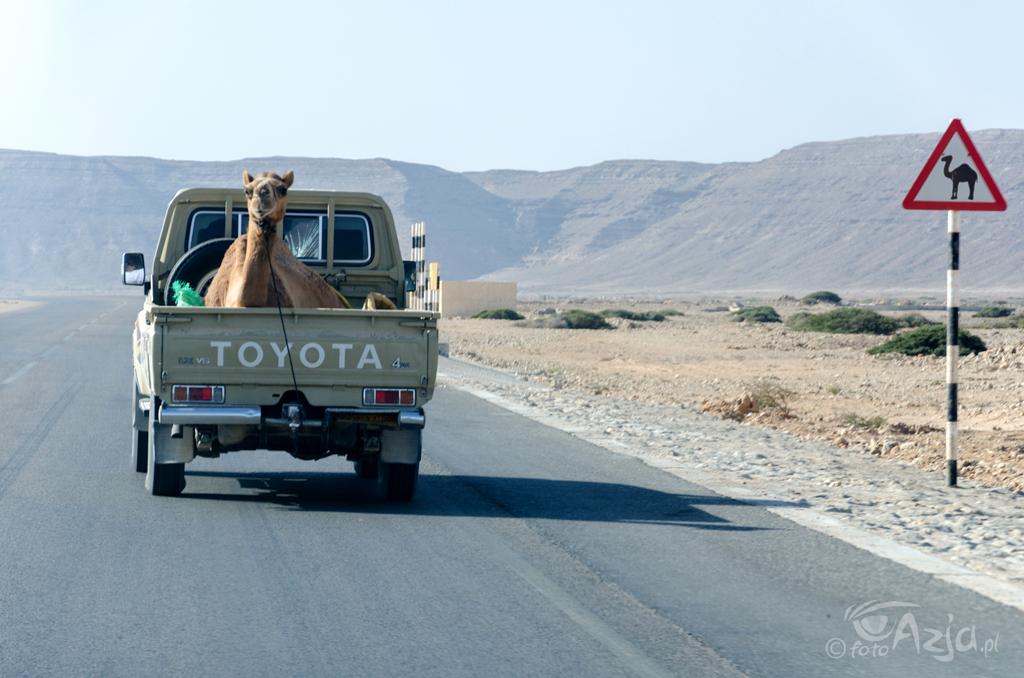 Autostrada Muscat-Salalah